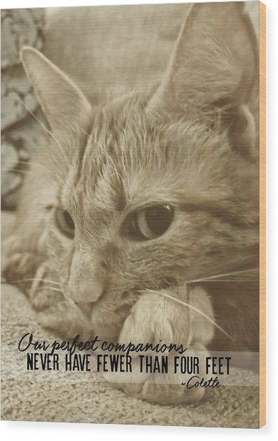 Little Lily Quote Wood Print by JAMART Photography