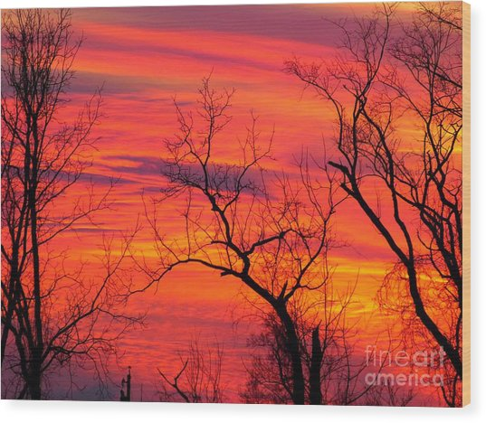 Little More Color At Sunset Wood Print