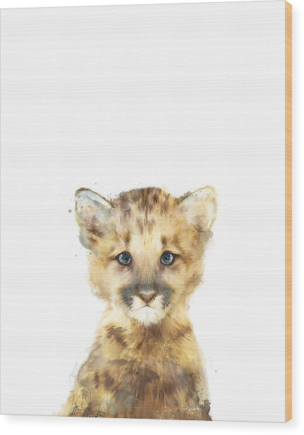Little Mountain Lion Wood Print
