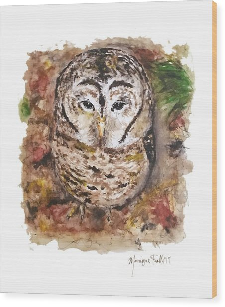 Little Owl Wood Print