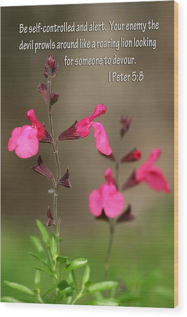 Little Pink Wildflowers With Scripture Wood Print by Linda Phelps