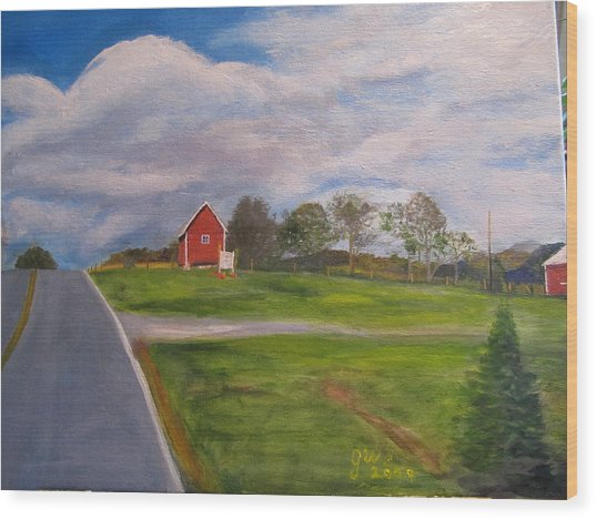 Little Red Barn On Detrick Rd Wood Print by Gloria Condon