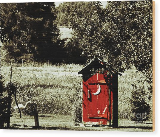 Little Red Outhouse Wood Print