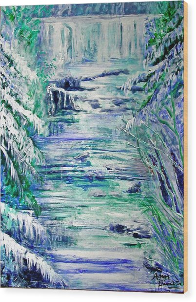 Little River Canyon Ice Storm Wood Print by Anne Hamilton