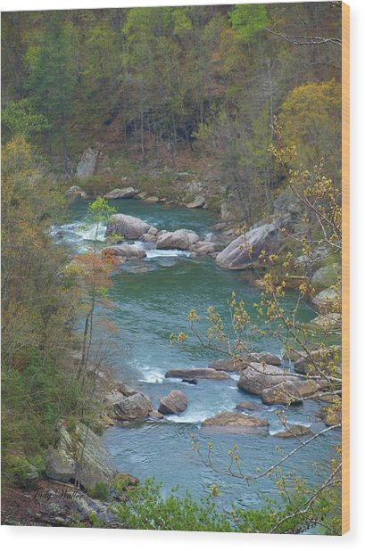 Little River Canyon Wood Print by Judy  Waller