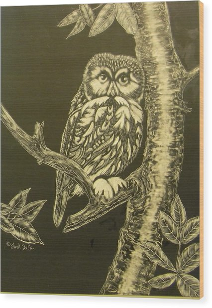 Little Saw-whet  Sold Wood Print