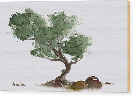 Little Tree 1 Wood Print
