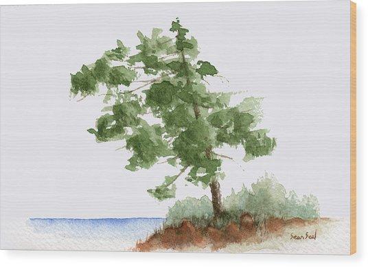 Little Tree 3 Wood Print