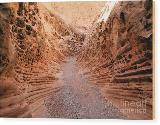 Little Wild Horse Canyon Wood Print by Andrew Serff