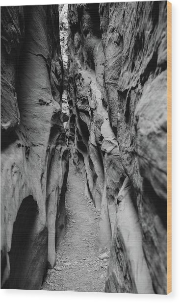 Little Wild Horse Canyon Bw Wood Print