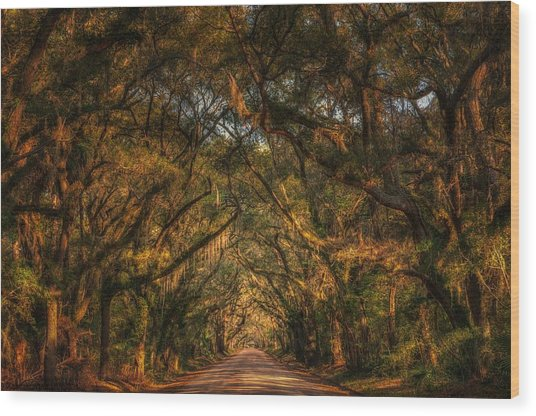 Living Legacies On Botany Bay Wood Print