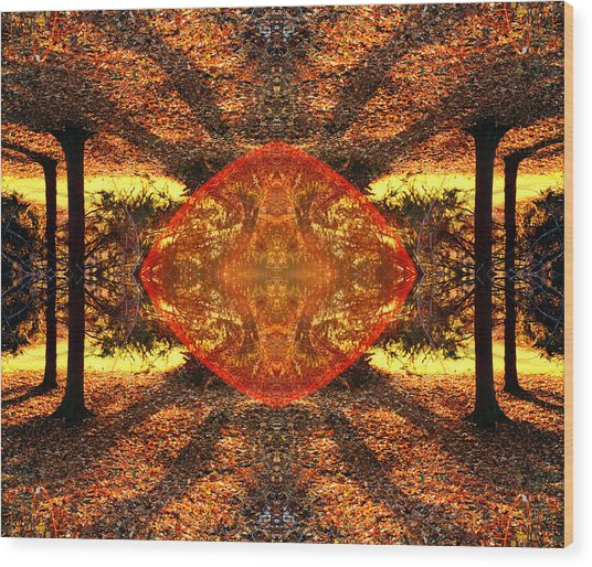 Living Light Wood Print