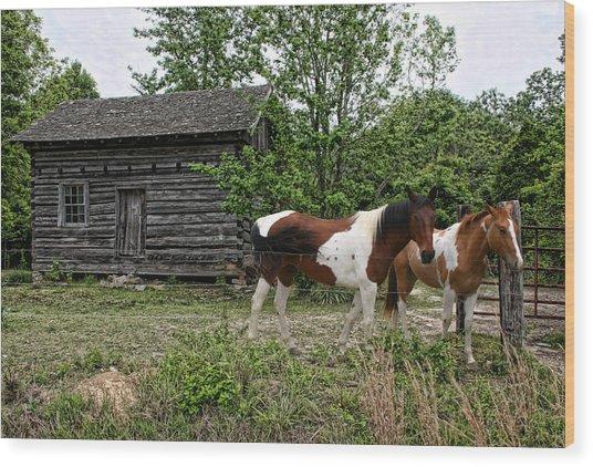 Livingston Cabin Wood Print