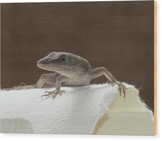Lizard Wood Print by Michele Caporaso