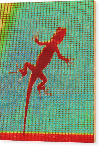 Lizard On The Screen Wood Print
