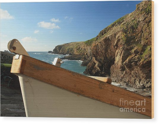 Lizard Point Wood Print by Carl Whitfield