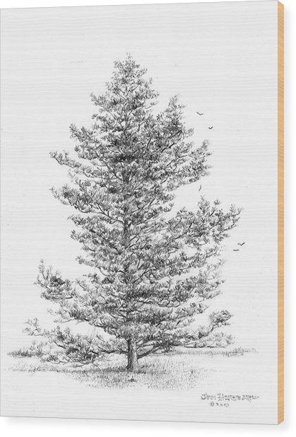 Loblolly Pine Wood Print