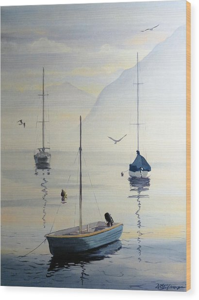 Locarno Boats In February Wood Print