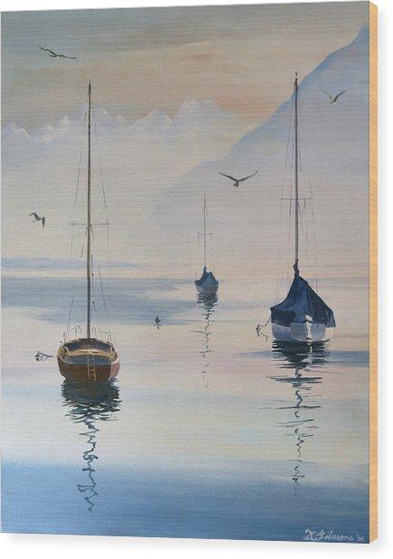 Locarno Boats In February-2 Wood Print