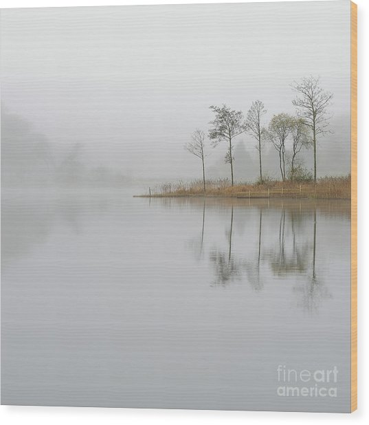 Loch Ard Misty Sunrise Wood Print