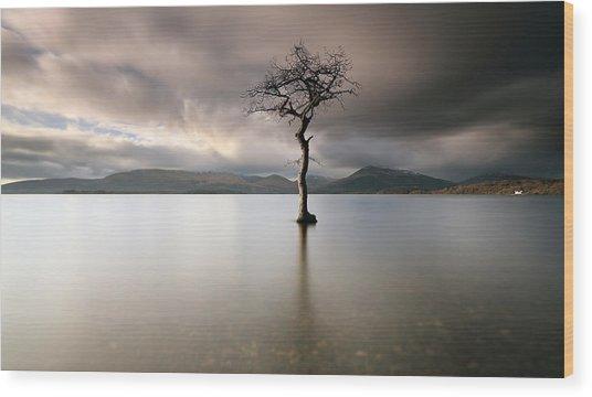Loch Lomond Lone Tree Wood Print