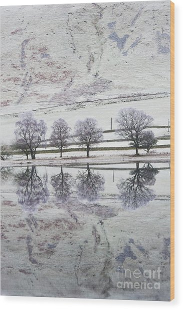 Loch Of The Lowes Wood Print