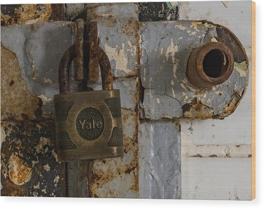 Locked Tight Wood Print by Denise McKay