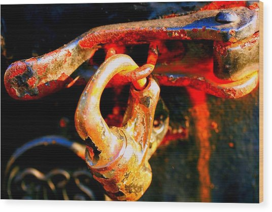 Locked Up Wood Print by Susan Moore