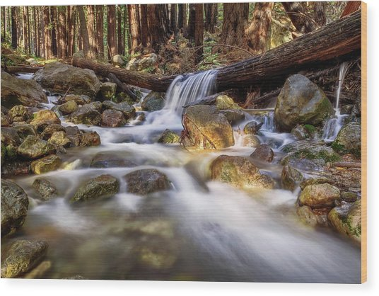 Log Falls On Limekiln Creek Wood Print