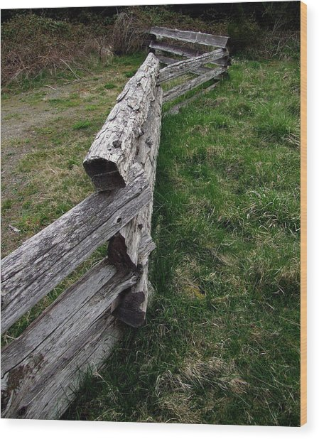 Log Fence Wood Print