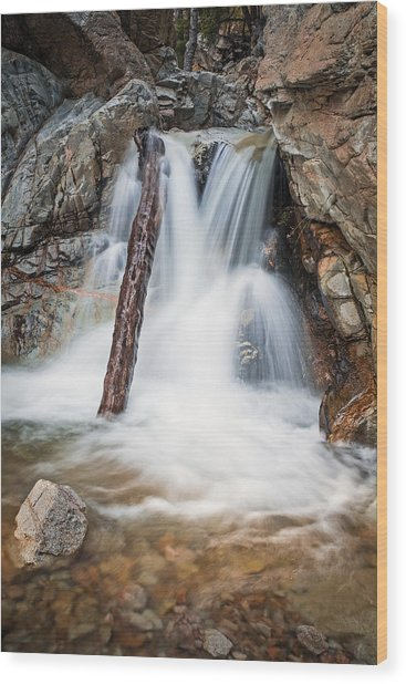 Log In The Waterfall Wood Print