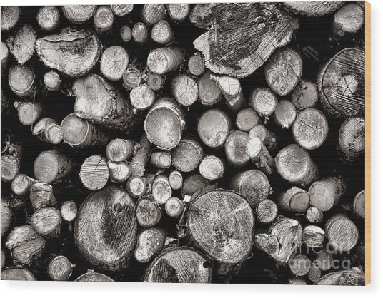 Logged In Wood Print
