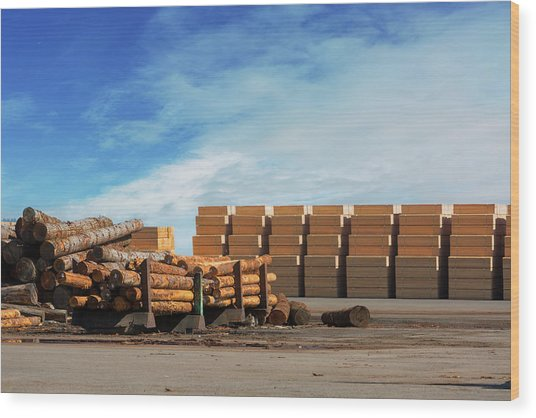 Logs And Plywood At Lumber Mill Wood Print