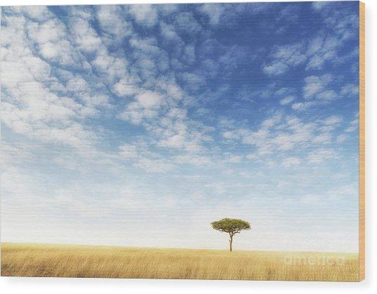 Lone Acacia Tree In The Masai Mara Wood Print