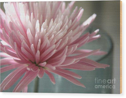 Lone Bloom Wood Print
