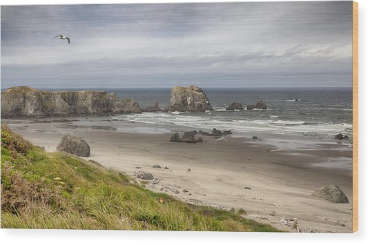 Lone Gull - Bandon Beach Wood Print
