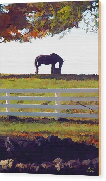Equine Solitude Wood Print
