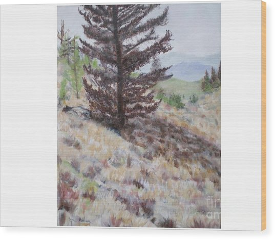 Lone Mountain Tree Wood Print by Hal Newhouser