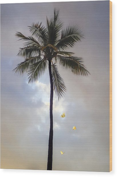 Lone Palm Tree Wood Print