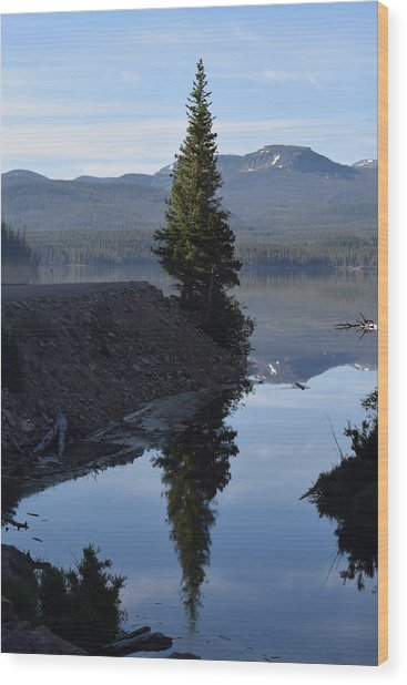Lone Pine Reflection Chambers Lake Hwy 14 Co Wood Print