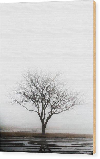 Lone Reflection Wood Print