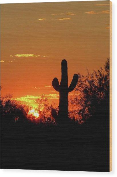 Lone Saguaro Sunrise Wood Print