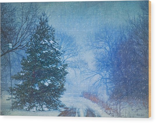 Lone Snowy Lane Wood Print