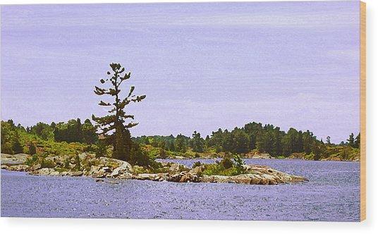Lone Tree 3 Db  Wood Print