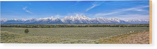 Lone Tree And The Tetons Wood Print
