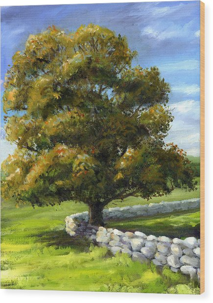 Lone Tree And Wall Wood Print