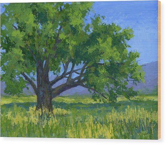 Lone Tree Wood Print by David King
