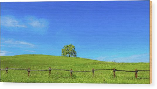 Lone Tree On A Hill Digital Art Wood Print