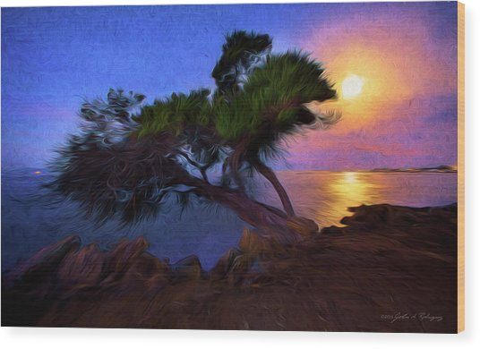 Lone Tree On Pacific Coast Highway At Moonset Wood Print