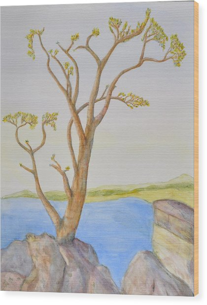 Lone Tree On The Ocean Wood Print by Jonathan Galente